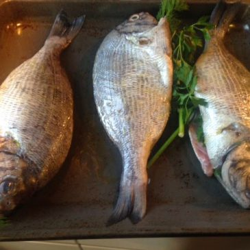 Baked Black Bream – by M. Kuehn